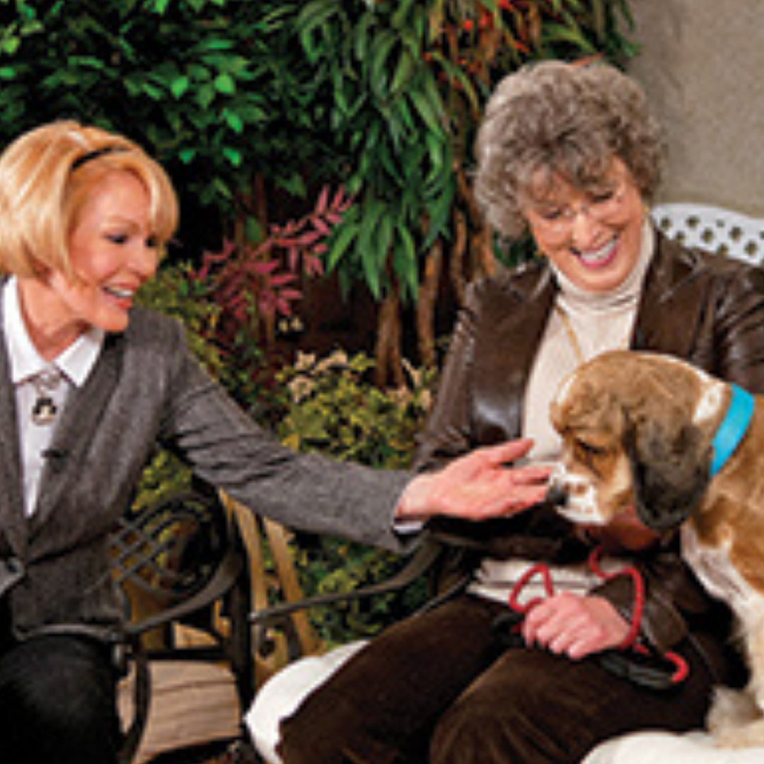 Dog Talk Television