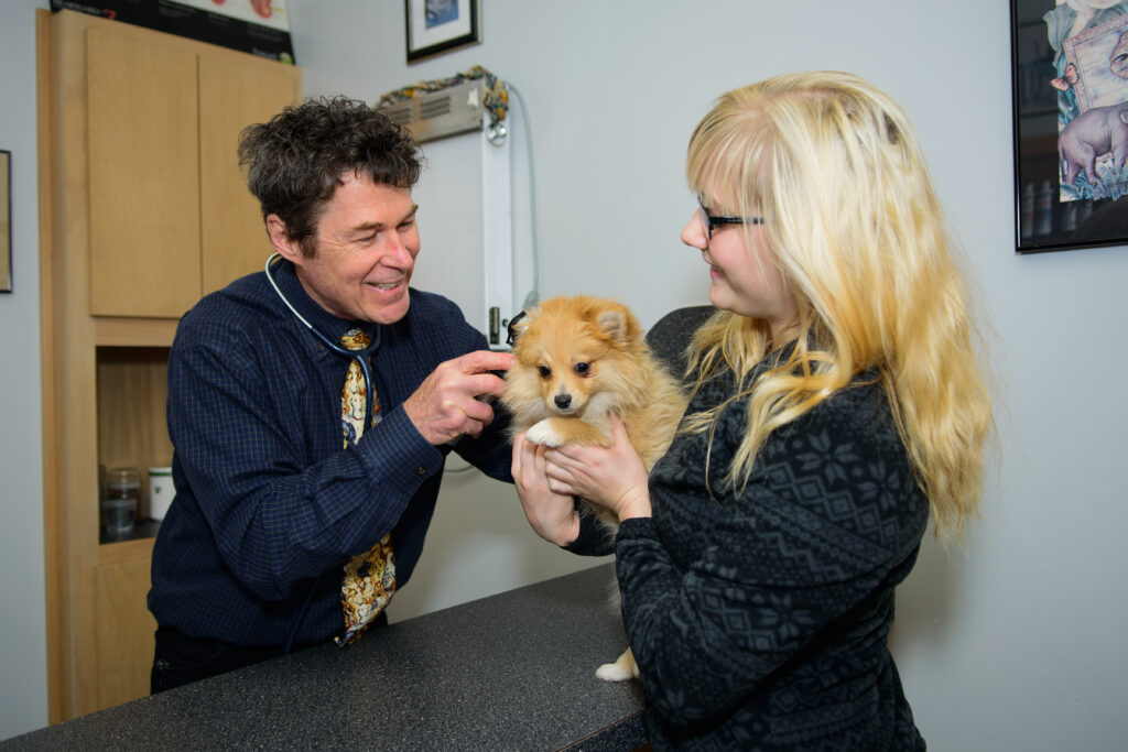 All Care Pet Hospital / The Visiting Vet